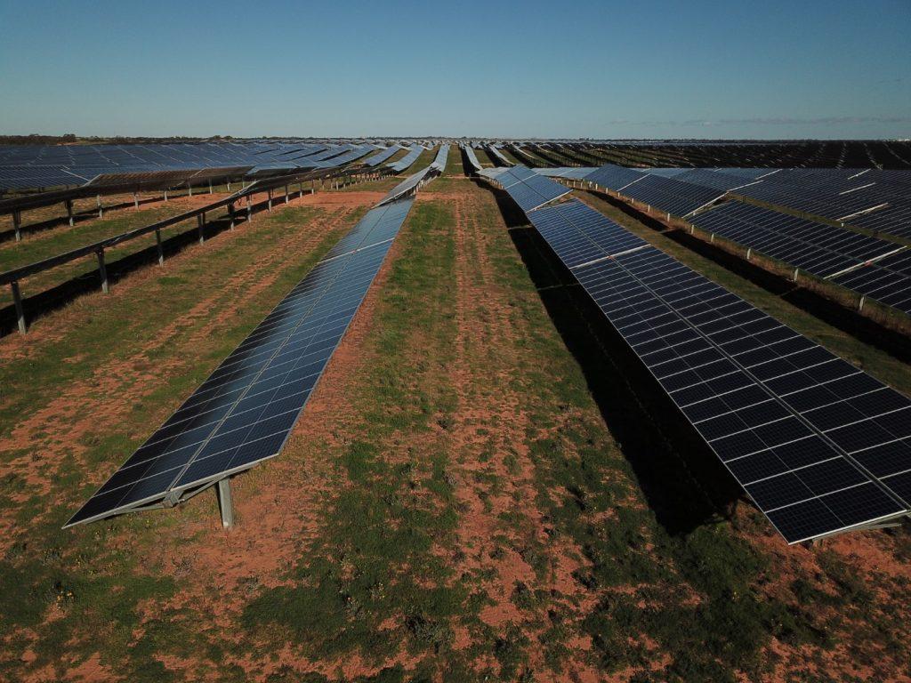 Single Axis Trackers at Kiamal Solar Farm